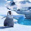 絶対零度 南極