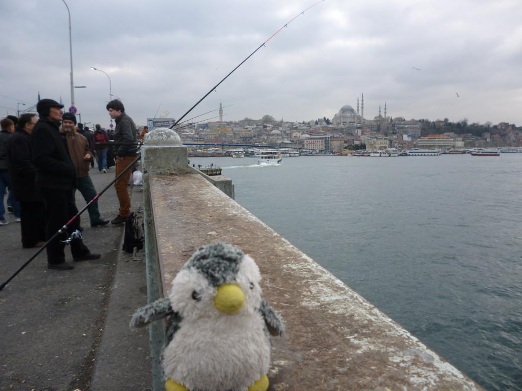 どの日も海沿いは釣りをしている人ばかり!