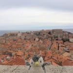 魔女の宅急便・紅の豚の舞台!クロアチアのドブロブニクは絶景!