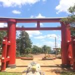 パラグアイに移住した日本人、日系パラグアイ人とは!?