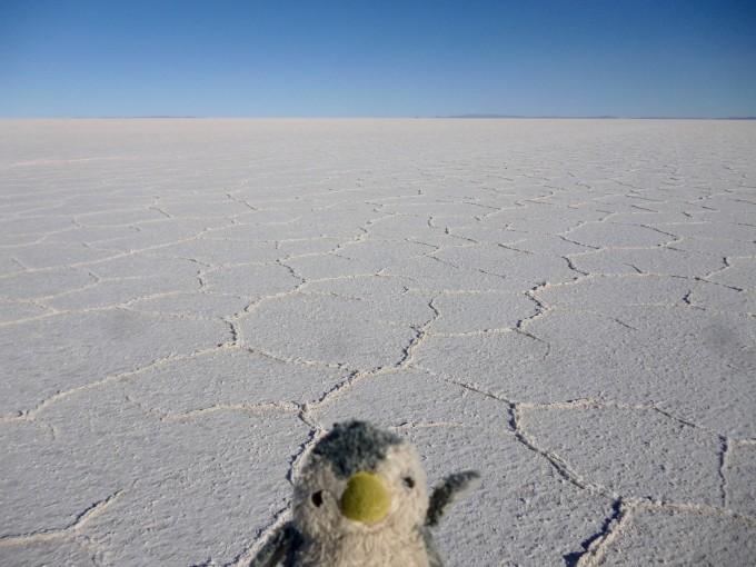 これがウユニ塩湖じゃー!
